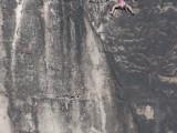Felix Maul klettert in der Südwand am Domwächter zum 2. Ring